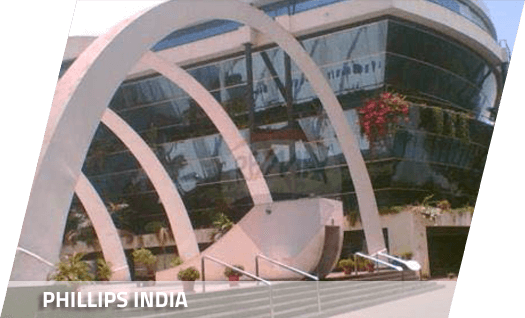 Phillips India Office structure
